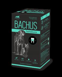 BACHUS Theeth&Gums