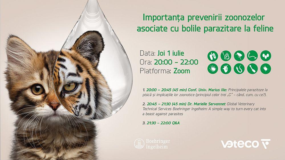 Importanța prevenirii zoonozelor  asociate cu bolile parazitare la feline